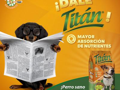 Master Titan Lector Dig.jpg