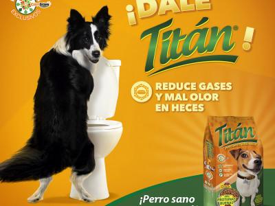 Master Titan Taza Dig.jpg